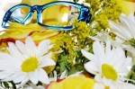 Picture of Lafont eyeglasses frame